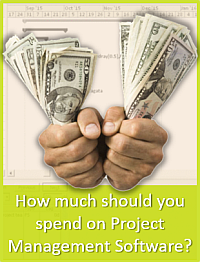 How much should you spend on Project Management Software?